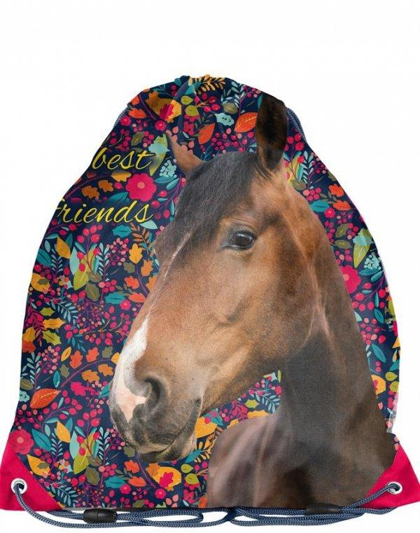 Worek Koń na Obuwie Gimnastykę Buty [PPKG18-712]