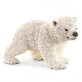 Młody Miś Polarny