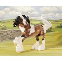 Koń Gypsy Vanner, Traditional