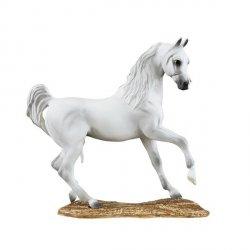 Koń Arab
