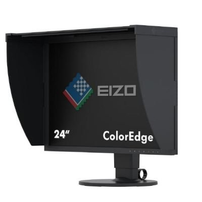 EIZO CG2420 ColorEdge, czarny, HDMI, DVI, DisplayPort, USB 3.0, Pivot