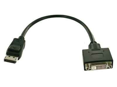 Fujitsu Display Port/ DVI Adapter Kabel