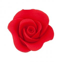 Róża Mini Max 20 szt. czerwona