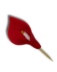 HOKUS - Kalia czerwona op. 32 szt.