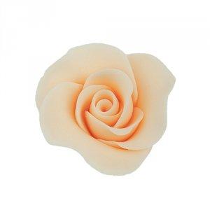 Róża Mini Max 20 szt. herbaciana