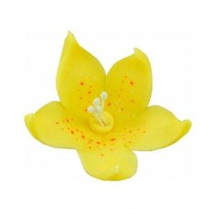 Lilijka żółta - kwiaty cukrowe - 20 szt.