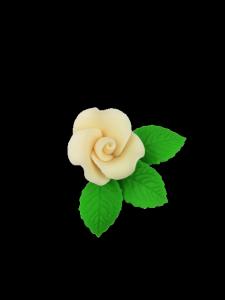 Róża mała z listkami - ecru 20 kompletów