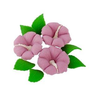 Zestaw cukrowe kwiaty HIBISKUS z listkami WRZOSOWY