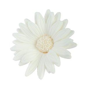 HOKUS - Margaretka 10 szt.  biała