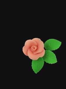 Róża mała z listkami - łososiowa 20 kompletów