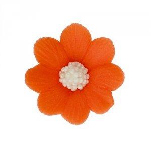 HOKUS - Miłek pomarańczowy 8 x 10 szt.