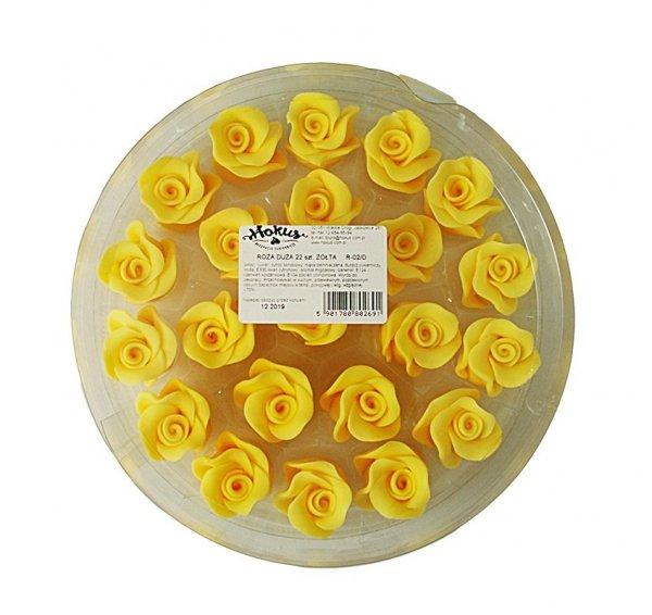Róża duża 22 szt. żółty