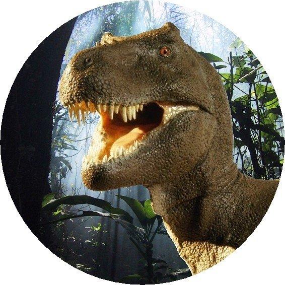Hokus - opłatek na tort okrągły Tyranozaur 3