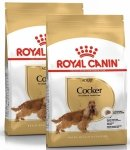 Royal Canin Cocker Adult 2x12kg (24kg)