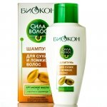 Shampoo for Dry and Brittle Hair with Argan Oil, Biokon