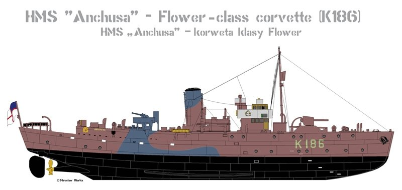 Mirage 350801 1/350 HMS 'Anchusa' - Korweta klasy Flower (K186)