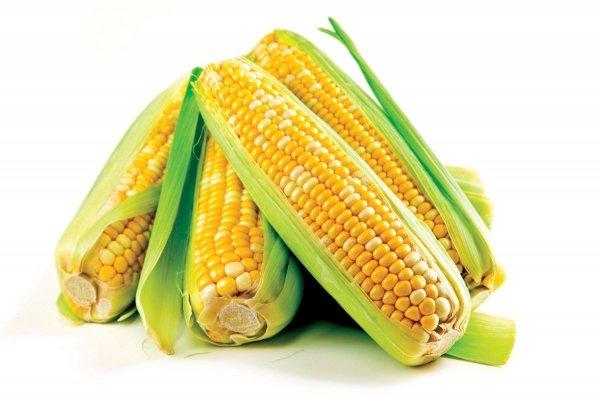 Kukurydza (kolby)