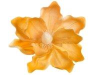 Magnolia Ciepło Żółty [Komplet - 20 Sztuk]