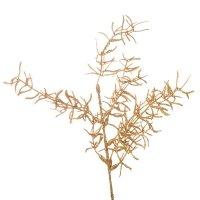 Asparagus Brokatowy Złoto [Komplet 5 sztuk] 602932