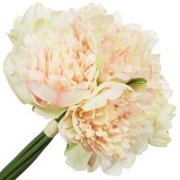 Bukiet Peonie Ecru/Róż 25cm [ Komplet 3szt ]