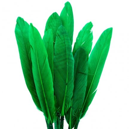 Piórka Lotki Krótkie Ciemny Zielony [ Komplet 10szt ]