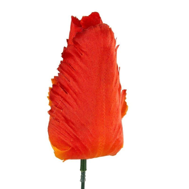 Główka Tulipan Pomarańcz 9cm [ Komplet 12szt ]