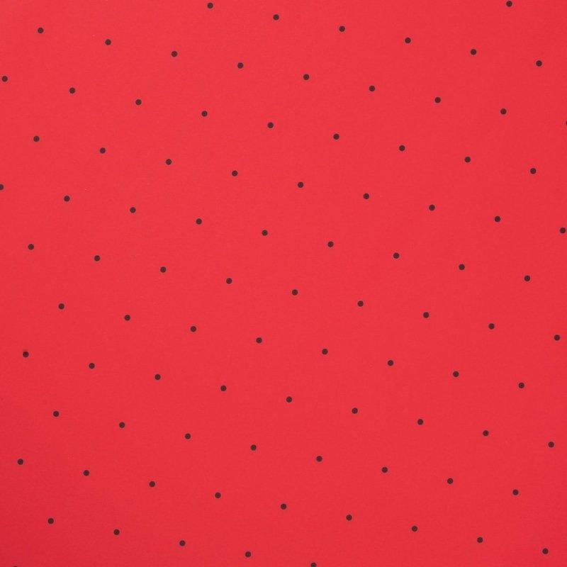 Folia Ozdobna Do Pakowania Czerwona W Czarne Kropki Zbliżenie