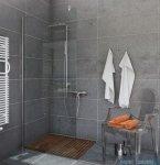 Sea Horse Easy In ścianka prysznicowa typu Walk In  120 cm przejrzyste BK251T12