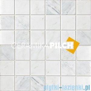 Mozaika kamienna Pilch NE 04-09-H 30x30
