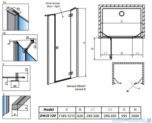 Radaway Essenza New DWJS drzwi wnękowe 120cm prawe szkło przejrzyste 385031-01-01R/384090-01-01