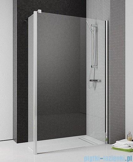 Radaway Eos II Walk-in kabina prysznicowa 100 prawa szkło przejrzyste + brodzik Delos C + syfon