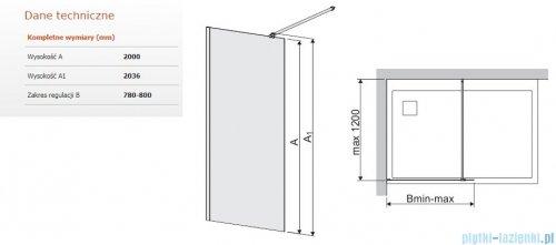 Sanplast Space Wall P/SPACEWALL kabina walk-in 80x200 cm przejrzyste 600-320-2120-42-401