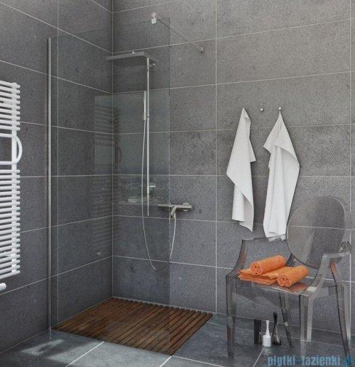 Sea Horse Easy In ścianka prysznicowa typu Walk In 120cm przejrzyste BK251T12
