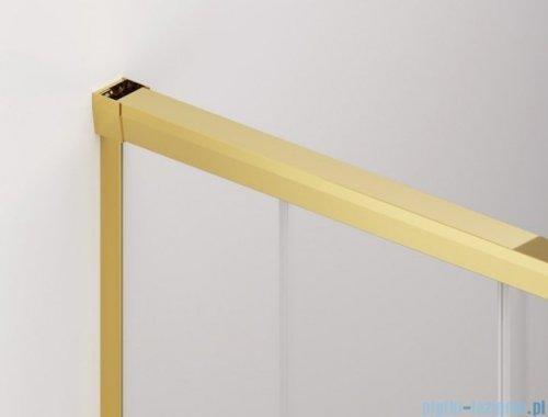 SanSwiss Cadura Gold Line drzwi przesuwne 160cm jednoskrzydłowe lewe z polem stałym CAS2G1601207