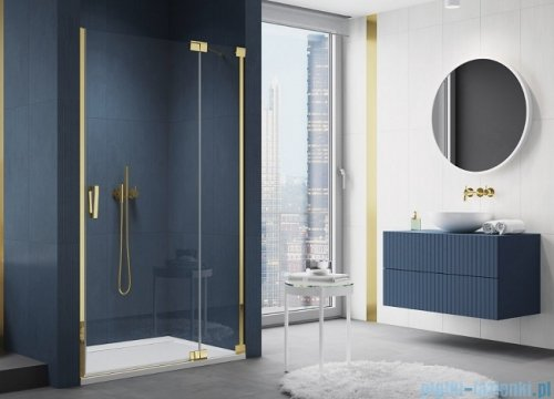 SanSwiss Cadura Gold Line drzwi wahadłowe 110cm jednoczęściowe prawe z polem stałym CA13D1101207