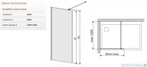 Sanplast Space Wall P/SPACEWALL-XL kabina walk-in 120x225 cm przejrzyste 600-320-3160-42-401