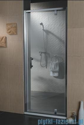 Omnires drzwi prysznicowe 100cm szkło przejrzyste S-100DTR