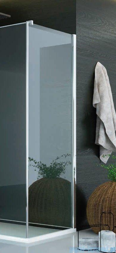SanSwiss Pur PUDT3P Ścianka boczna wymiary specjalne 100-160/do 200cm cieniowane czarne PUDT3PSM41055