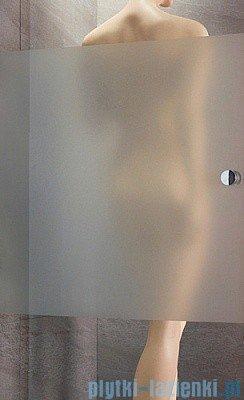 Radaway Eos DWD Drzwi wnękowe 120 szkło intimato 37773-01-12N