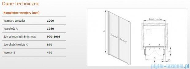 Sanplast drzwi skrzydłowe wahadłowe DD/PRIII 100x195 cm przejrzyste 600-073-0940-38-401