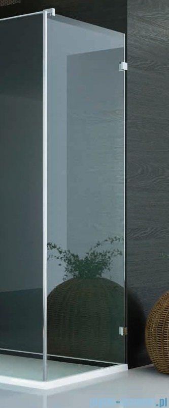 SanSwiss PUR PU31 Ścianka boczna wymiary specjalne 30-100/do 200cm Master Carre PURDT3SM21030