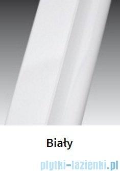 Novellini Drzwi do wnęki z elementem stałym GIADA G+F 162 cm lewe szkło przejrzyste profil biały GIADNGF162S-1A