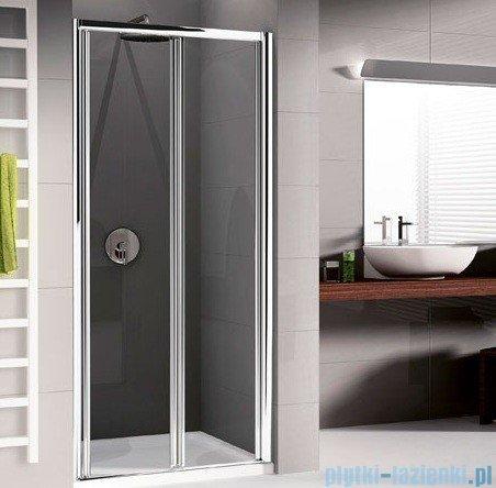 Novellini Drzwi prysznicowe harmonijkowe LUNES S 96 cm szkło przejrzyste profil srebrny LUNESS96-1B