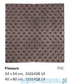 Sealskin Mata antypoślizgowa Pleasure do brodzika grey 54x54cm 315142814