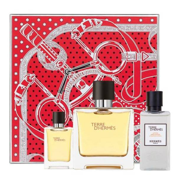 Hermes Terre d'Hermes Set - Eau de Parfum 75 ml + mini Eau de Parfum 12.5 ml + After Shave Lotion 40 ml