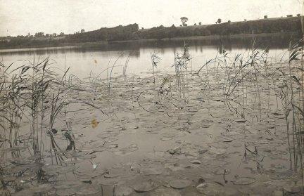 Henryk Poddębski - [CHODECZ - jezioro - fotografia widokowa].