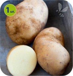 Ziemniak Eco Sarpo Shona 1 sztuka