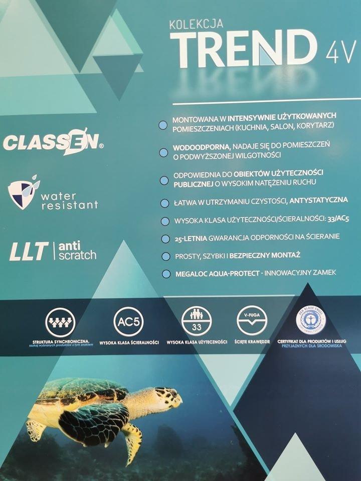 CLASSEN - TREND 4 V / Dąb Wostok 8mm AC5 V4  52606