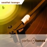 Perfect Tunes - Soulful Lounge (CD)