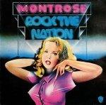 Montrose - Rock The Nation (LP)